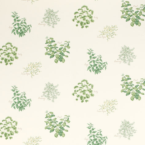 Herbs Hedgerow Wallpaper