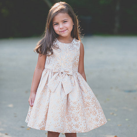 Sleeveless Brocade Toddler Dress