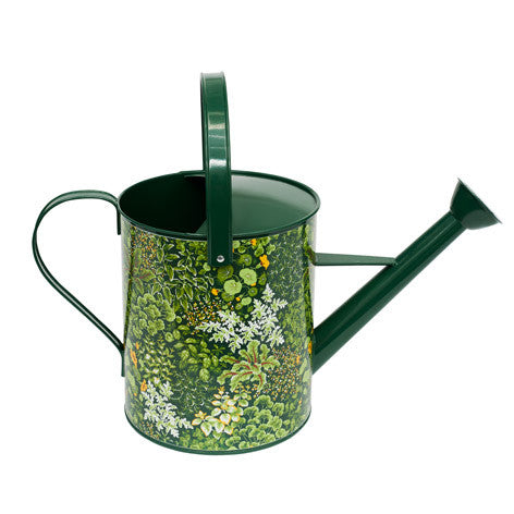Living Wall Watering Can