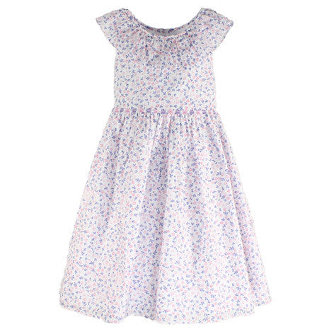 Floral Print Ruffle Neck Toddler Dress
