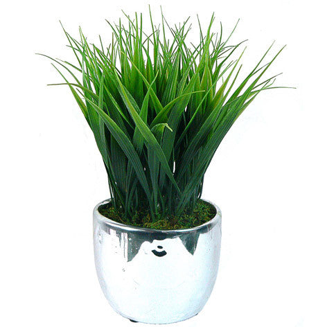 Erica Bay Grass in Silver Ceramic Container
