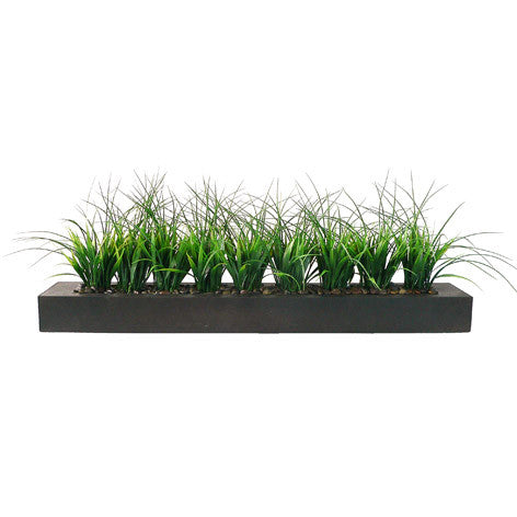 Ferryn Grass in Wood Planter