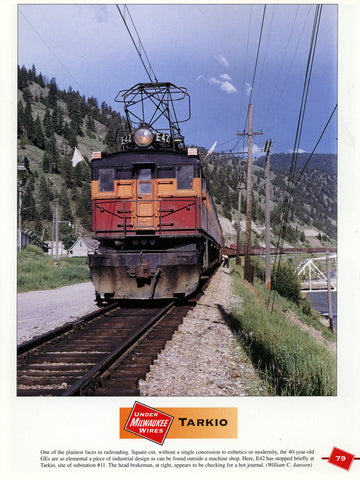 Under Milwaukee Wires - The Color Photography of Sanford Goodrick and William C. Janssen (Digital Reprint)