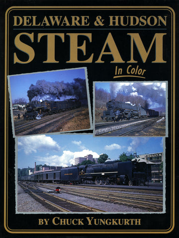 Delaware and Hudson Steam In Color