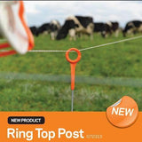 Gallagher | Ring Top Posts