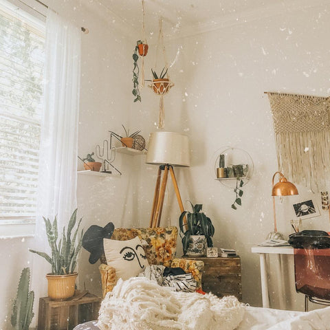 Dorm Decor Ideas Social Sunday