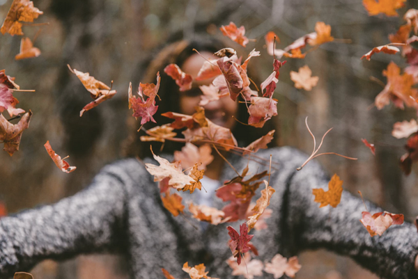 social sunday autumn vibes playlists