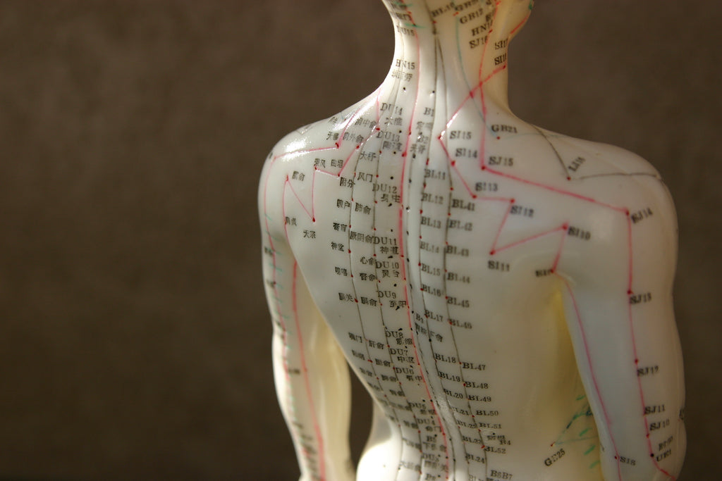 Acupuncture 101: How The Ancient Practice Could Change Your Wellness Journey
