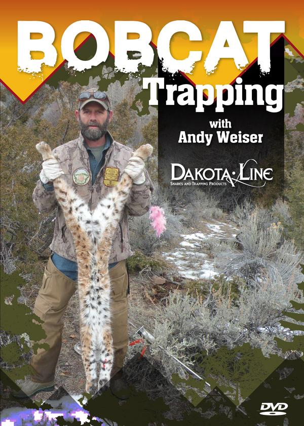 Bobcat Trapping with Andy Weiser