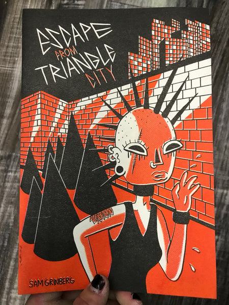 Escape From Triangle City by Sam Grinberg