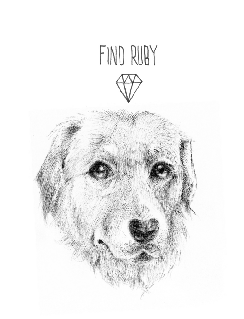Find Ruby by Alicia Cardell