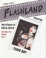 Zine: Flashland Vol. 1, Issue 2 by Evelyn DeVere