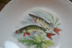 20 piece Porcelain Fish Set
