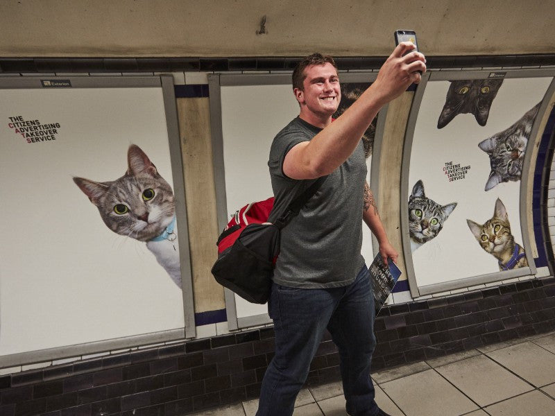 Cats Take Over London Tube Station!