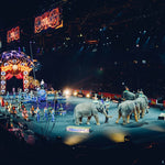 Barnum to Retire Circus Elephants