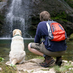 Hiking with Your Dog:  5 Essential Tips