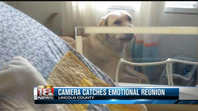 Video:  A Family is Reunited with their Beloved Service Dog