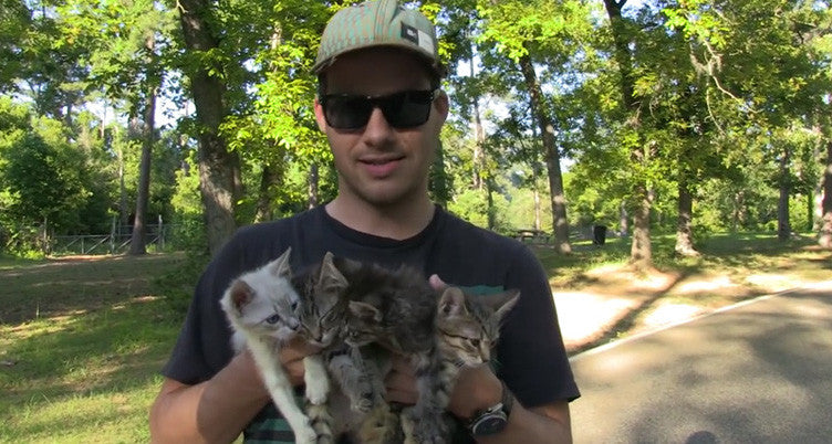 Video:  A Walk in the Woods Becomes Operation Kitten Rescue!