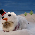 Temptations Cat Treats Christmas Commercial is the Best Holiday Ad Ever!