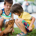 The Ten Best Pets for Kids