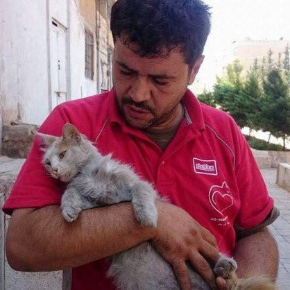 Video:  Meet the Man Who Cares for the Abandoned Cats of Aleppo