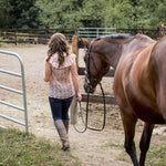 How Big Should a Horse Round Pen Be?