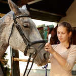 Tacking Up a Horse: Everything You Need to Know