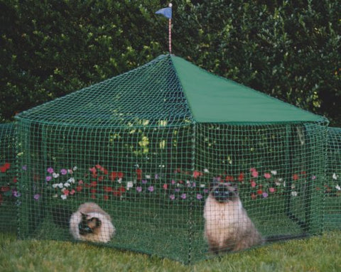 Cat enclosures let indoor kitties enjoy the great outdoors animal you can still order one of their diy catio plans and make one yourself both custom and diy catios come in all sorts of shapes and sizes solutioingenieria Image collections