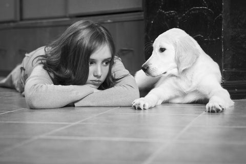 benefits of owning a pet by teenager