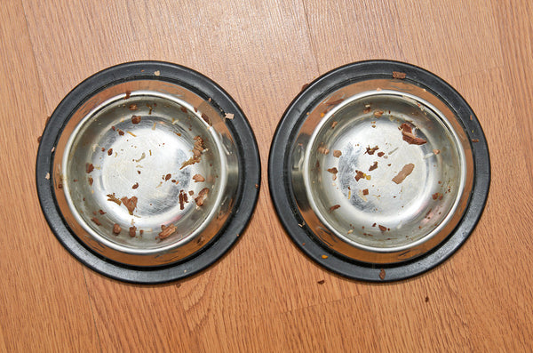 Cat Food Bowls