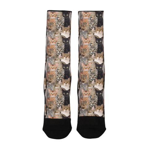 Cat Cat and More Cats Socks