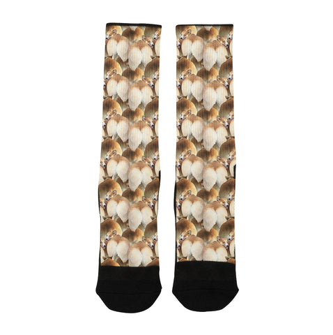 Corgi Butts Socks