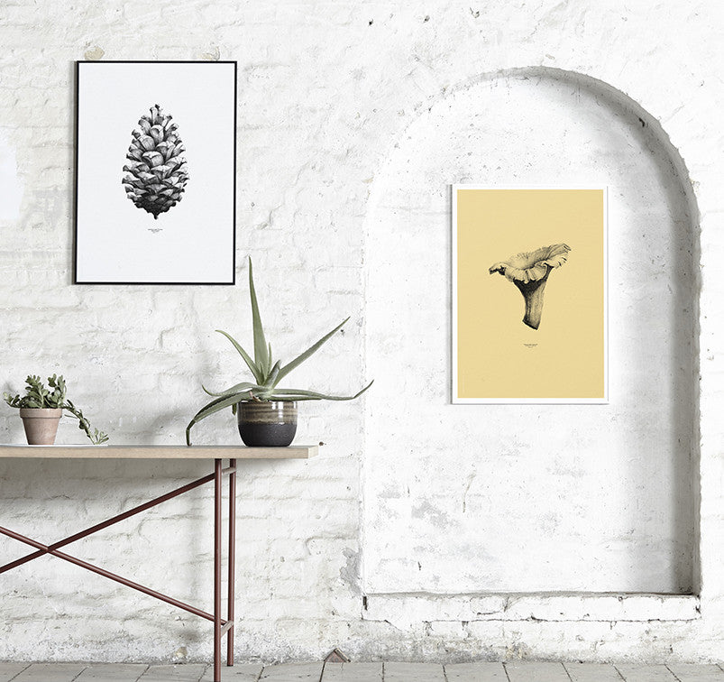 Pine Cone grey Illustration Print - Tea and Kate