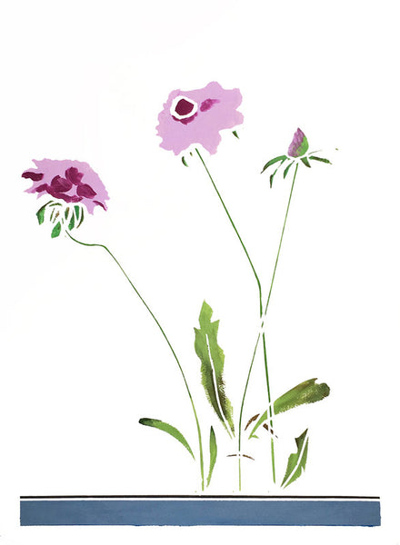 Rosha Nutt wildflower paintings