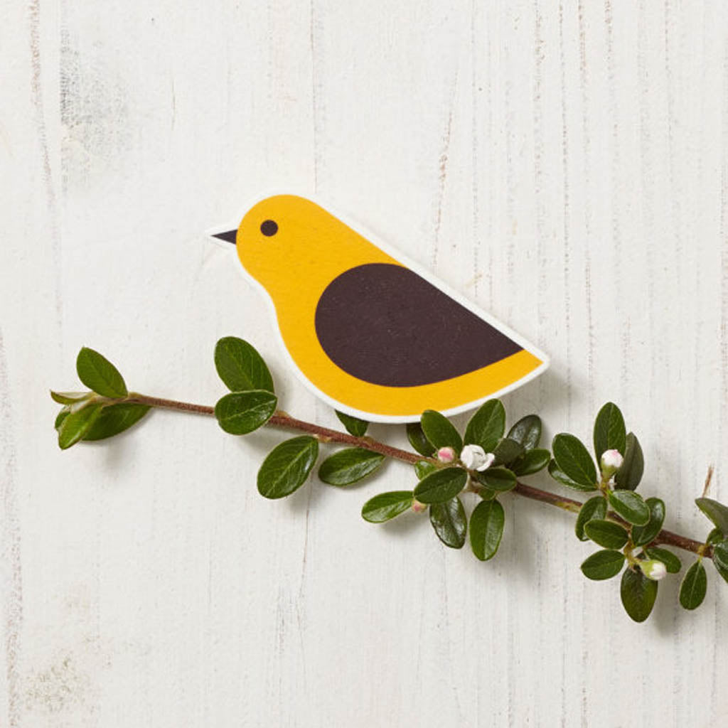 Meet the designer of this bird brooch and learn to create your own beautiful designs