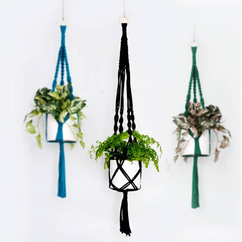 Knot your own fabulous macrame plant hanger (with succulent included!)