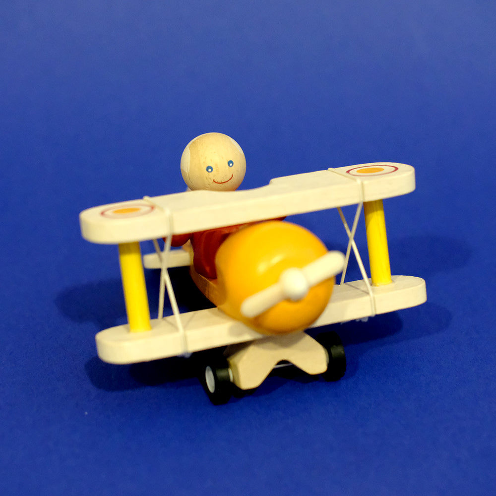 Airplane with pilot