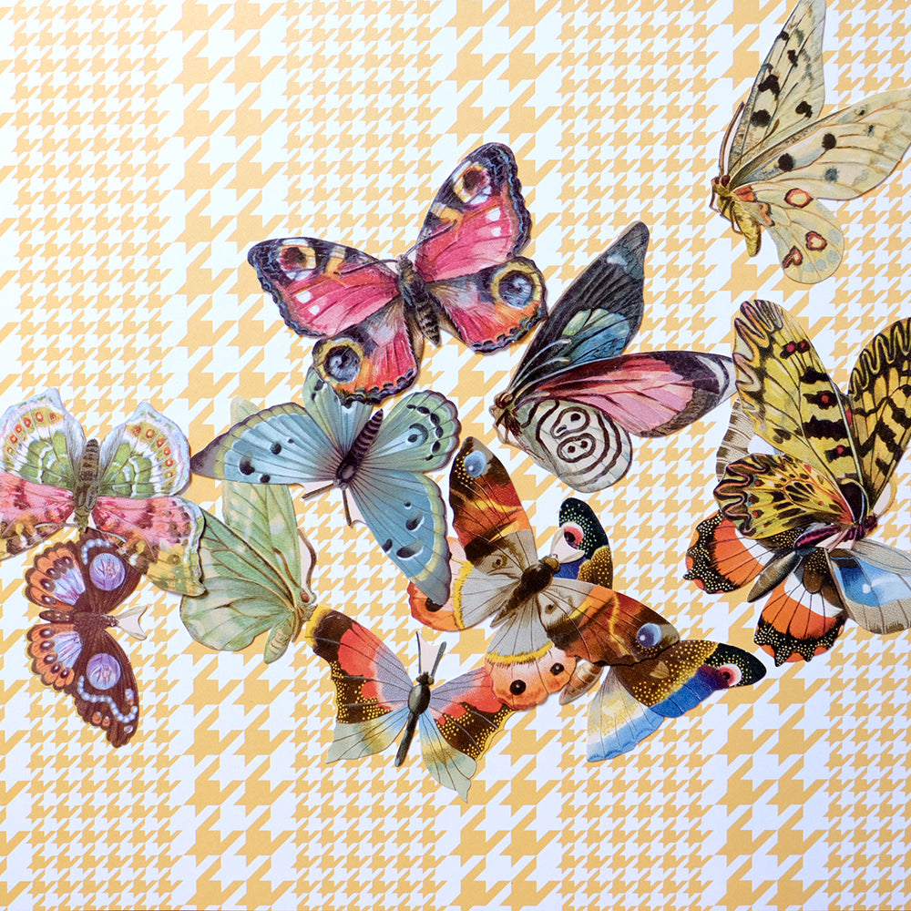 Butterfly tag set