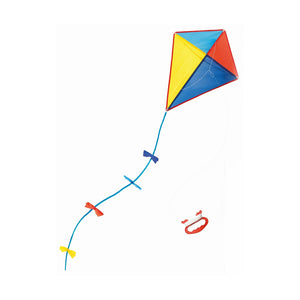 Multi Coloured Kite