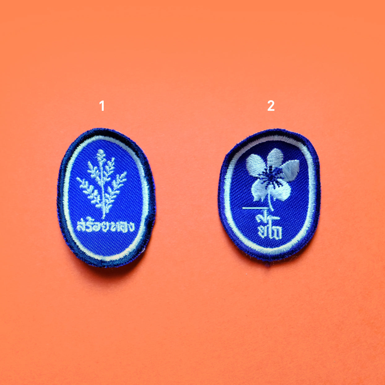 Scout patch collection1 - Summer Made
