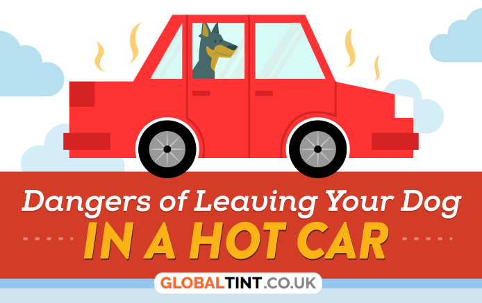 Infographic: Dangers of Leaving Your Small Dog in A Hot Car.