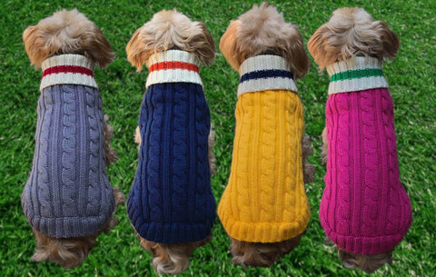Dallas Dogs Preppy Pup Dog Sweater on models