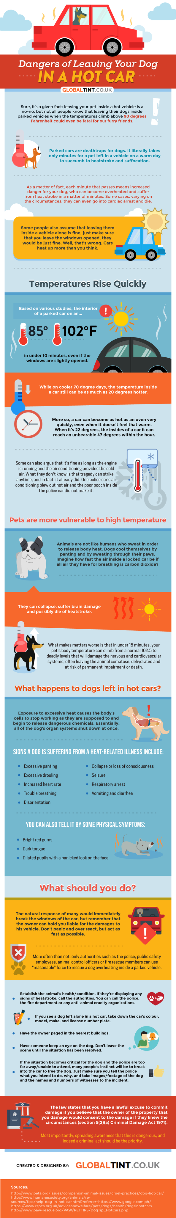 dangers of leaving your dog in a hot car