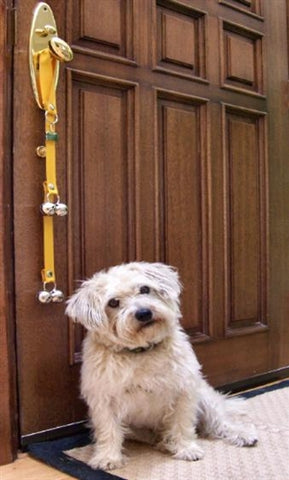 Five Places To Hang Poochiebells Dog Potty Training Bells