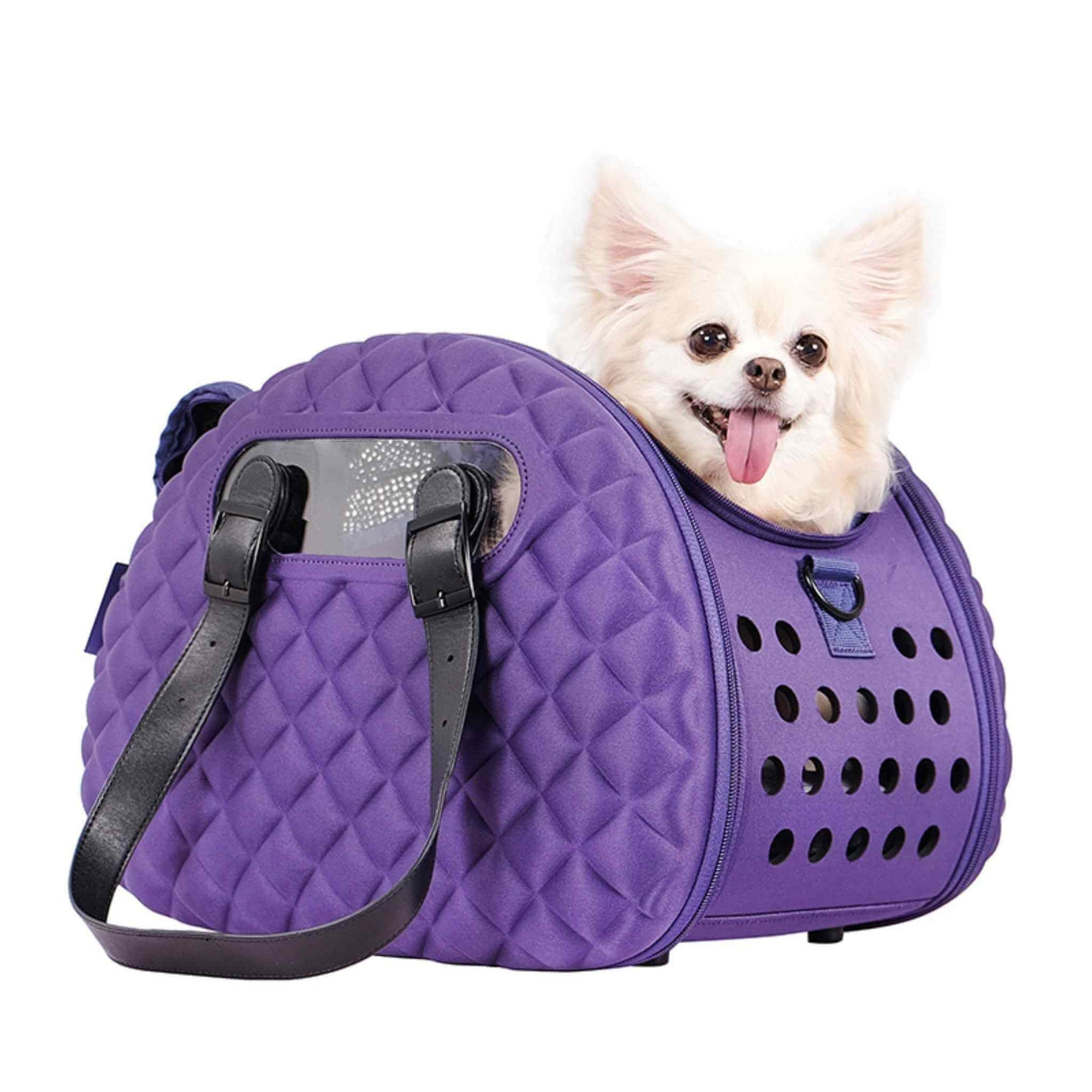 Diamond Deluxe Small Dog Carrier - with a Chihuahua