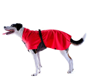 Gold Paw Series Rain Paw Dog Raincoat - Red