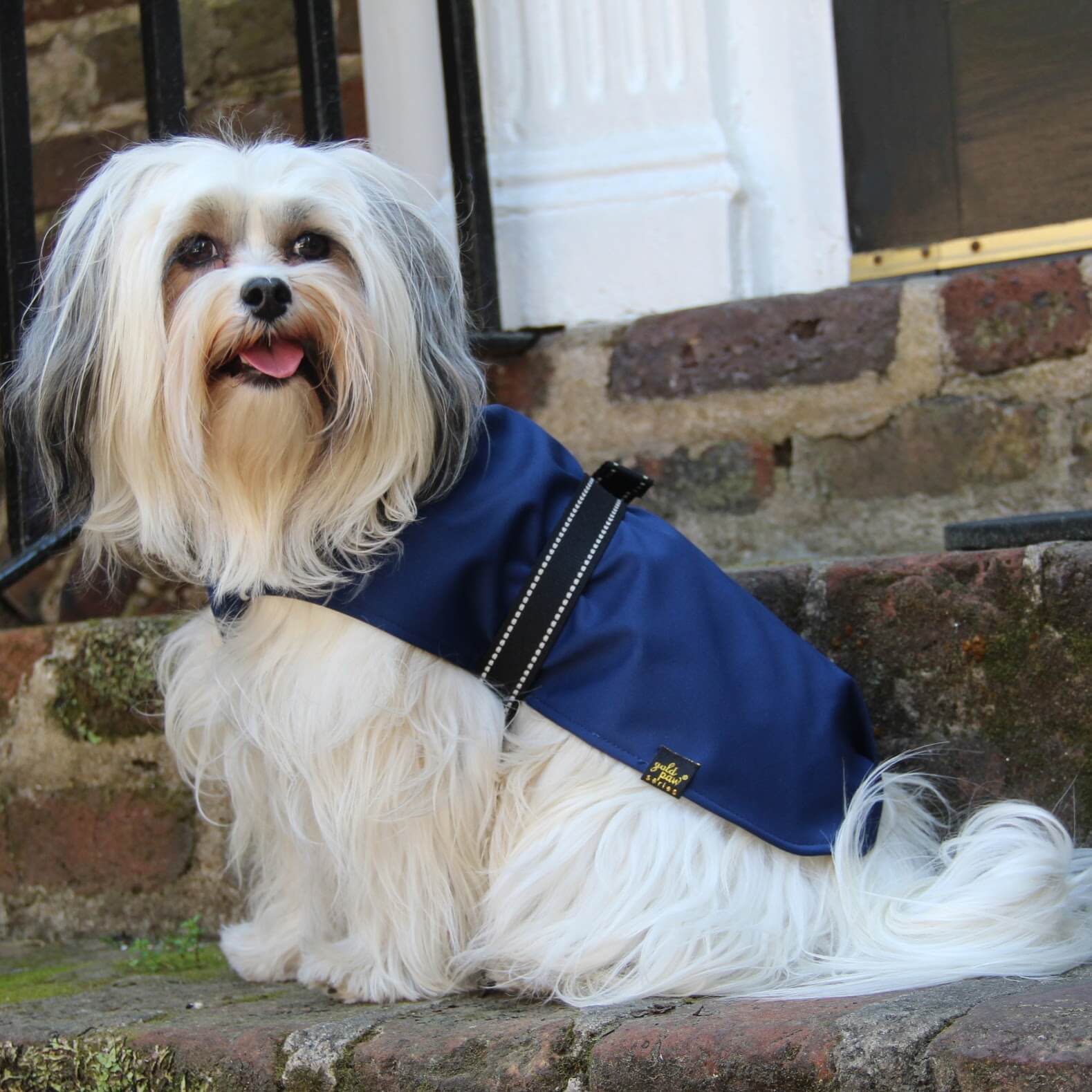 Gold Paw Series Rain Paw Dog Raincoat - Navy