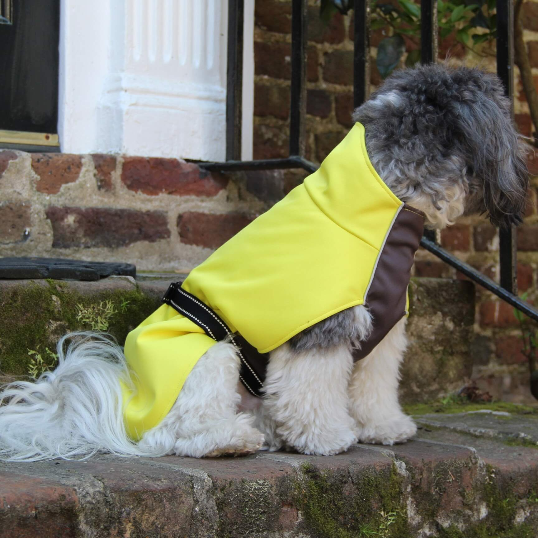 Gold Paw Series Rain Paw Dog Raincoat - Yellow