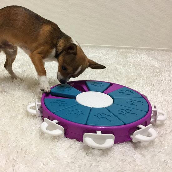 Nina Ottosson Dog Twister Treat Dispensing Dog Toy