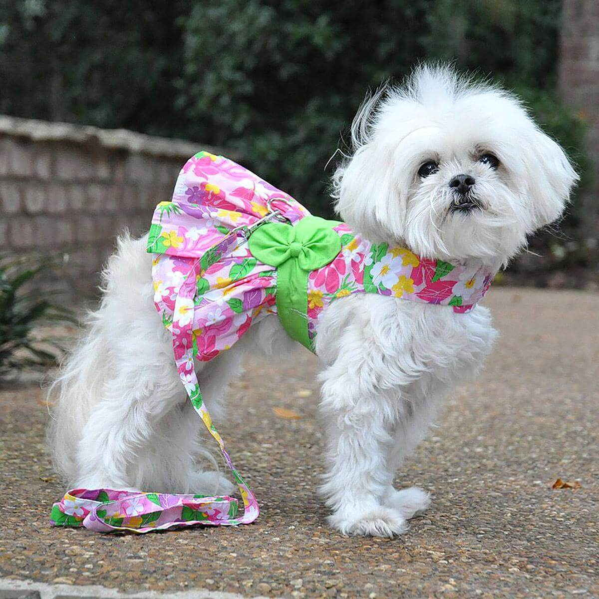 Pink Hawaiian Floral Dog Dress - Model